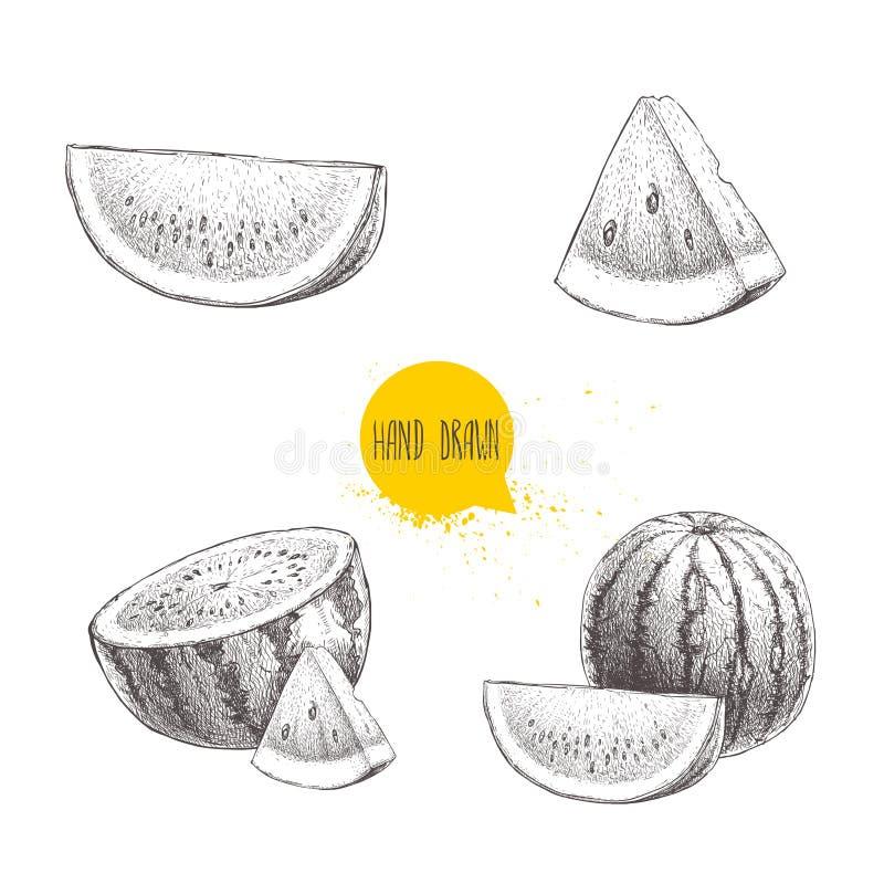 套手拉的剪影样式西瓜和西瓜切片 葡萄酒设计果子 有机夏天食物例证 皇族释放例证