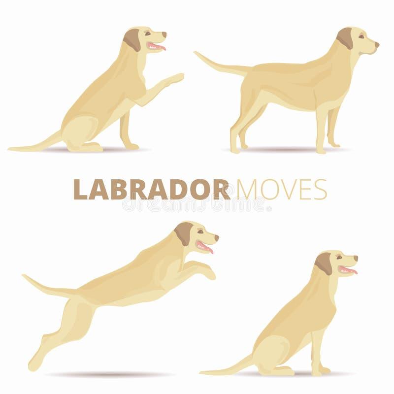 套拉布拉多狗品种以各种各样的姿势 传染媒介retr 向量例证