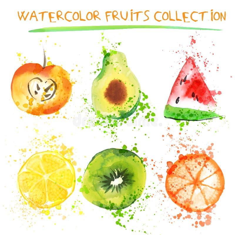 套新鲜水果水彩对象 Watercolored苹果、柑橘、鲕梨和qiwi在一艺术品收藏与 向量例证