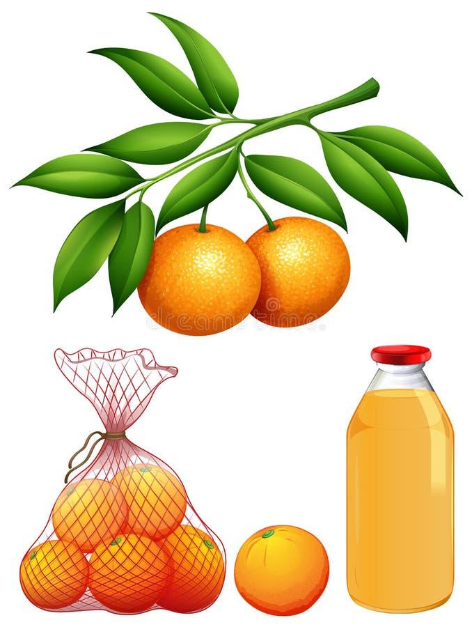 套新鲜的桔子和汁液 向量例证