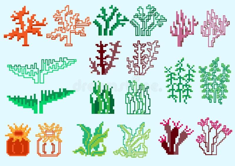套映象点海藻 向量例证