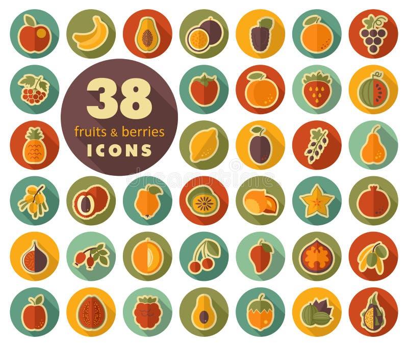 套果子和莓果平的象 向量例证