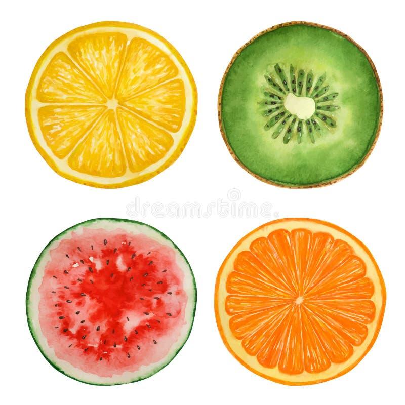 套水彩果子和西瓜,油漆纹理,传染媒介 向量例证