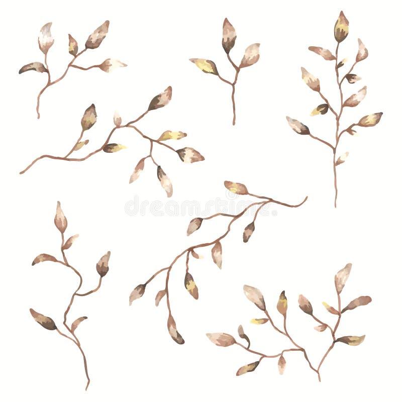 套水彩秋叶和枝杈 植物的剪贴美术 花卉装饰设计要素 皇族释放例证