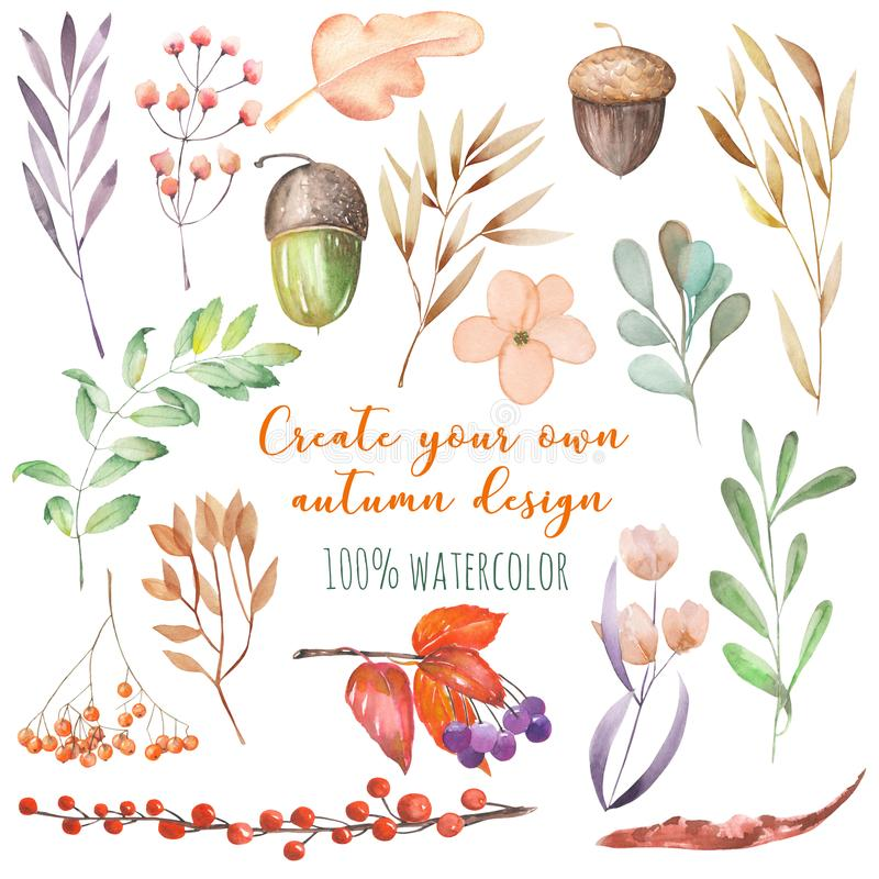 套水彩秋天植物:黄色叶子、秋天莓果,橡子和其他 向量例证