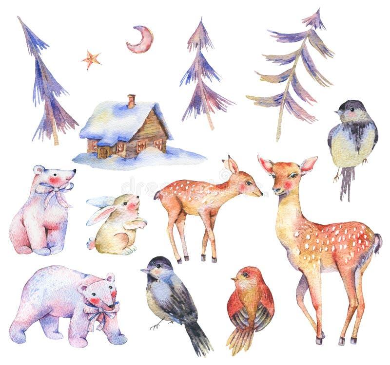套水彩逗人喜爱的北极熊,鹿,小鹿,野兔 皇族释放例证