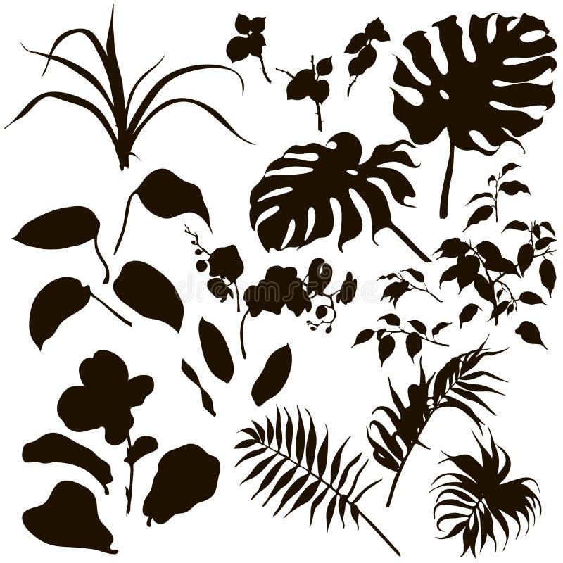套热带植物剪影 向量例证
