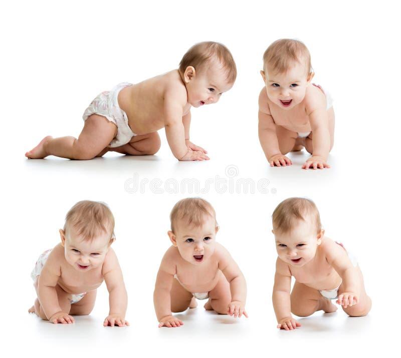 套爬行的婴孩佩带的尿布 免版税库存图片