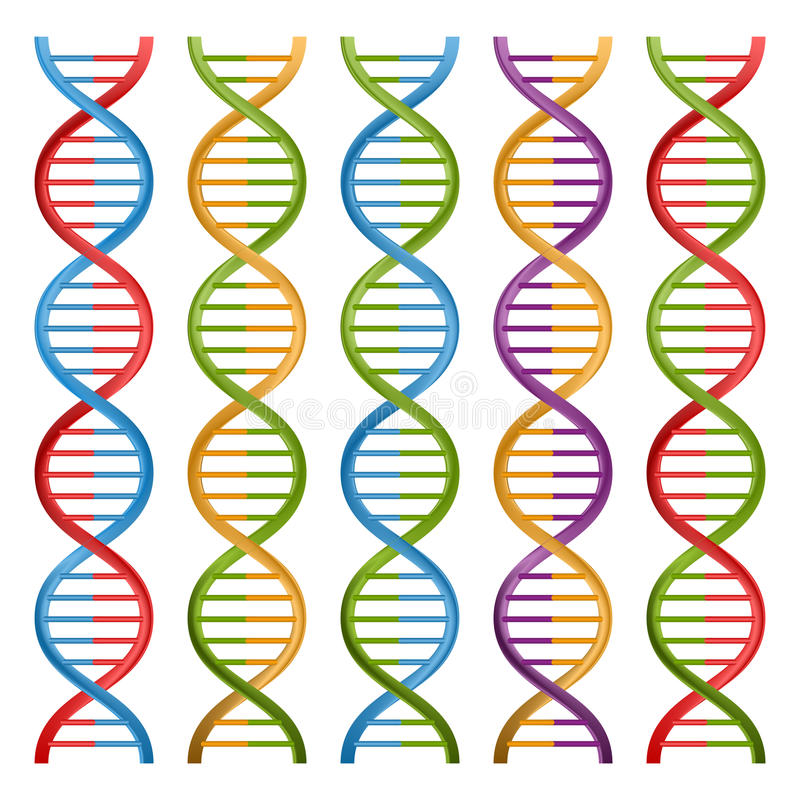 套科学和医学的脱氧核糖核酸标志 库存例证