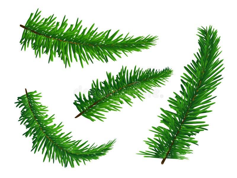 套绿色豪华的云杉的分支 在白色背景和新年的隔绝的标志圣诞节 也corel凹道例证向量 库存例证