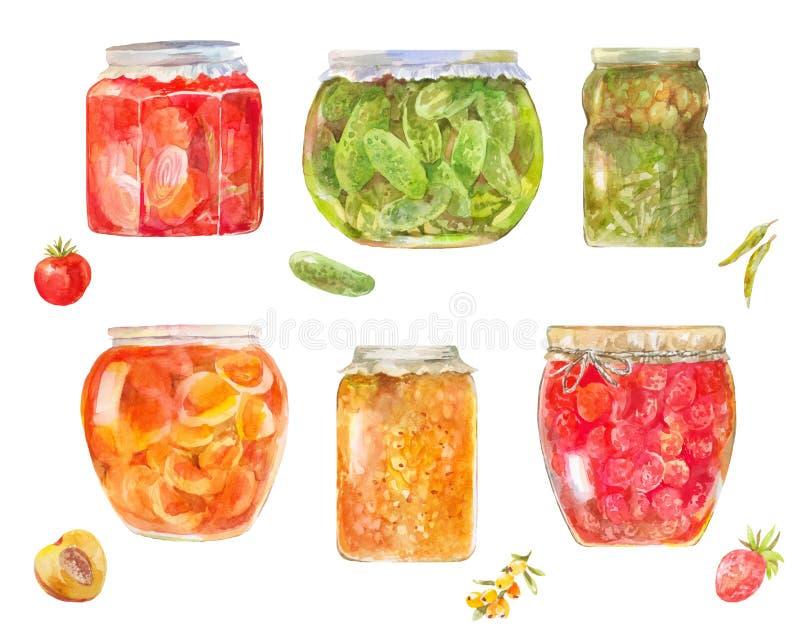 套罐装蕃茄,黄瓜,莓果,桃子,海buckthor 库存例证