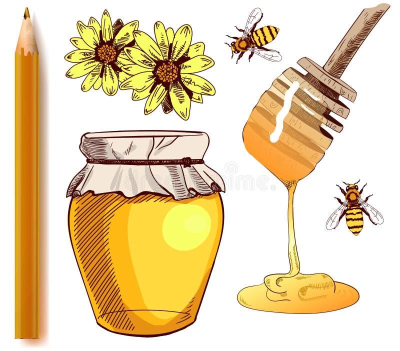 套色的剪影和现实铅笔 传染媒介例证的汇集 蜂蜜 库存例证