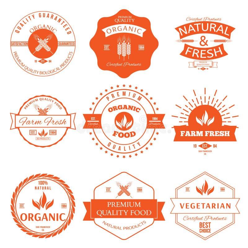 套葡萄酒标签的样式有机食品的元素和徽章 向量例证