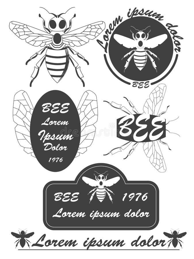 套葡萄酒蜂蜜、蜂标签、徽章和设计元素 向量例证