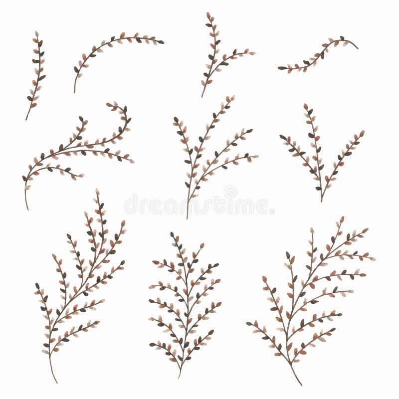 套被绘的水彩秋叶和枝杈 设计的花卉装饰元素 也corel凹道例证向量 向量例证
