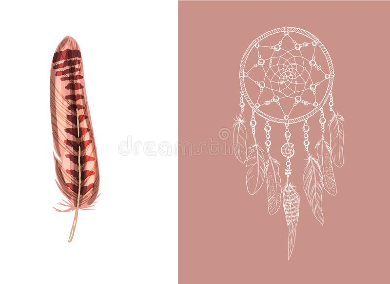 套设计和装饰元素 在白色背景隔绝的详细的色的羽毛关闭 手拉的华丽种族梦想c 库存例证
