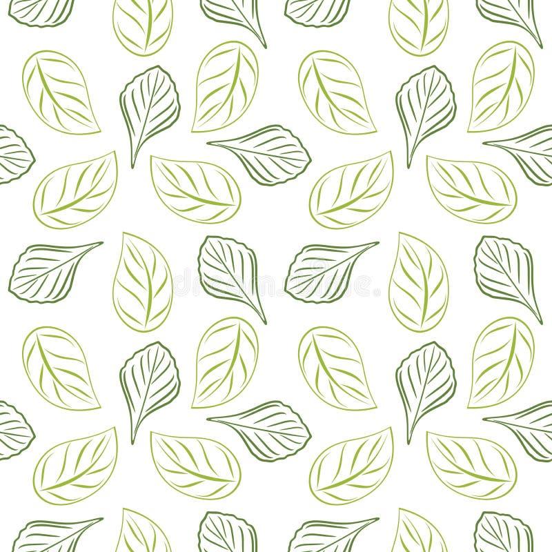 套设计的无缝的被概述的叶茂盛背景 绿色 皇族释放例证