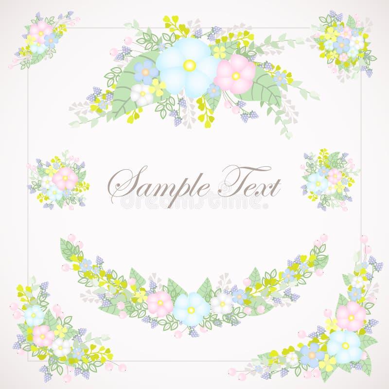 套轻淡优美的色彩的花卉例证 库存图片