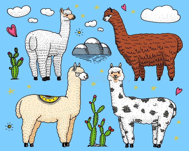 套逗人喜爱的羊魄骆马或野生骆马之类在仙人掌和山背景  滑稽的微笑的动物在秘鲁为 向量例证