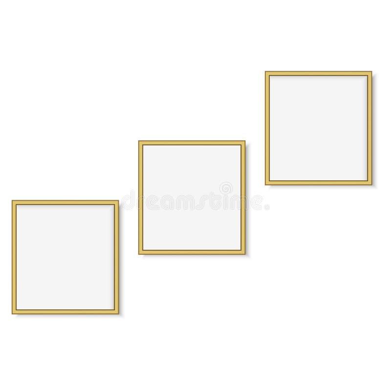 套金正方形照片框架 向量 库存例证