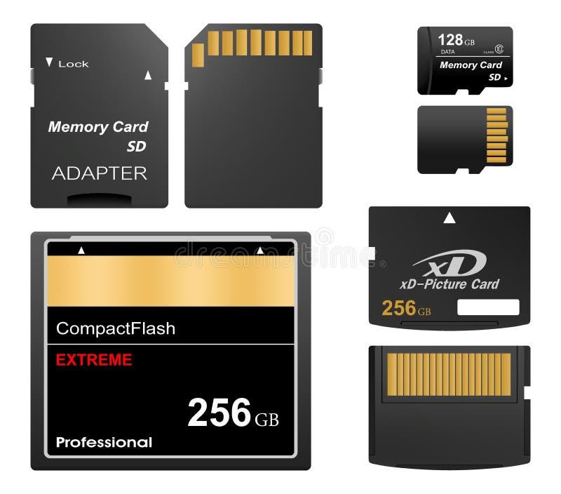 套黑标准数字sd,xd和紧凑内存前面和后面有金联络的与适配器sd卡片的在a 免版税图库摄影