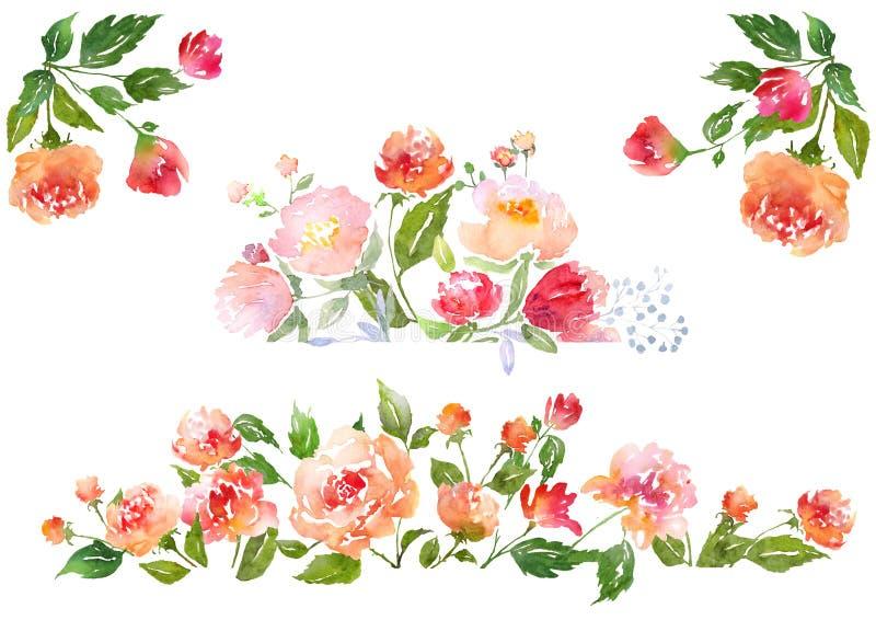 套水彩花卉构成 向量例证