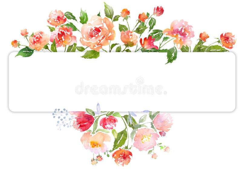 套水彩花卉构成 皇族释放例证