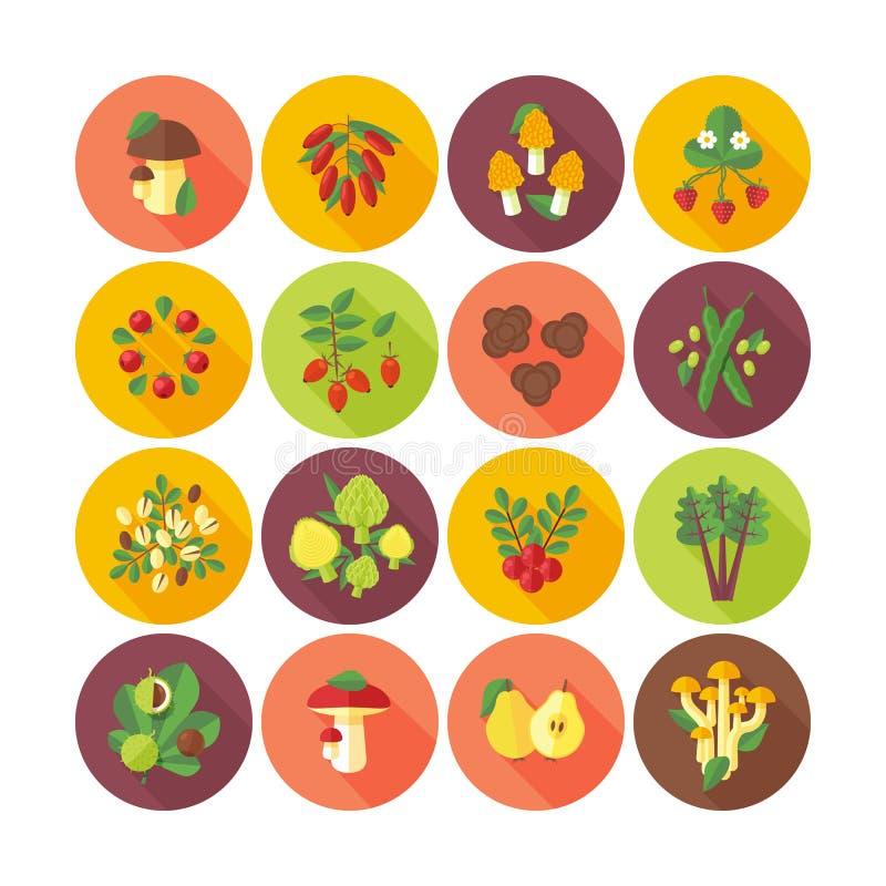 套水果和蔬菜的平的设计象 皇族释放例证