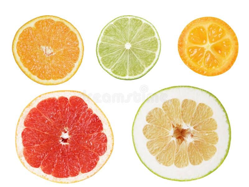 套从柑橘水果的裁减 免版税库存图片