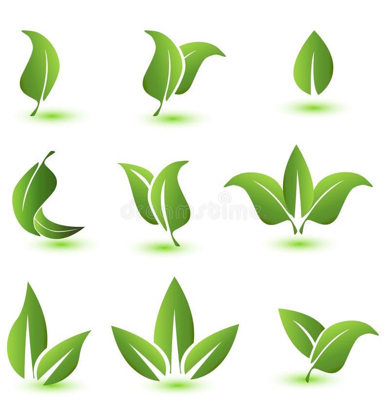 套绿色生叶象元素 向量例证