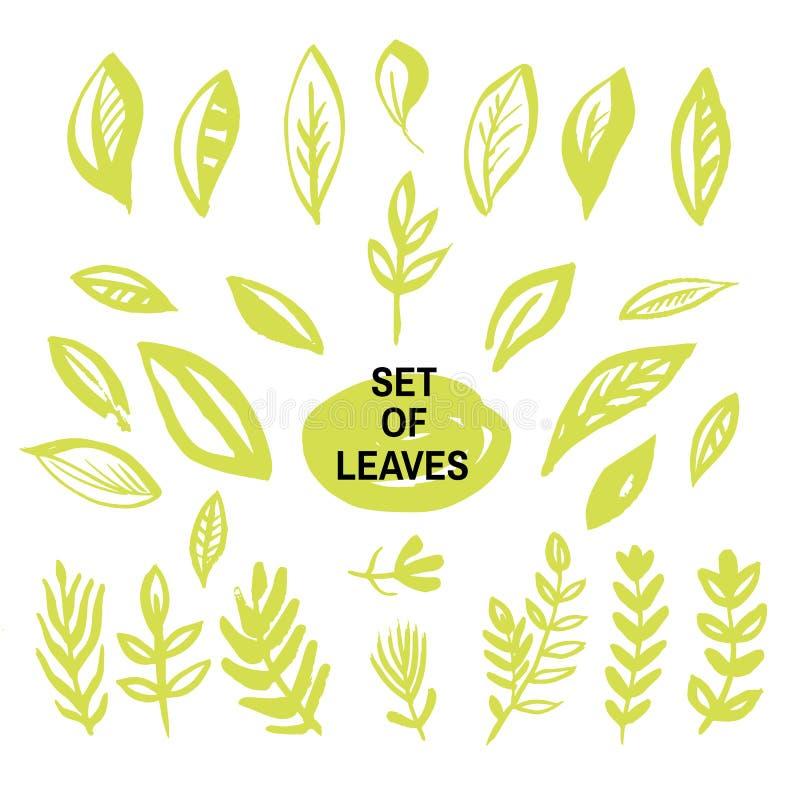 套leaves1 库存例证