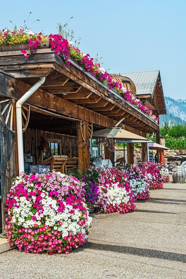 奥卡那根谷一家农场店前绽放着鲜花 免版税库存图片
