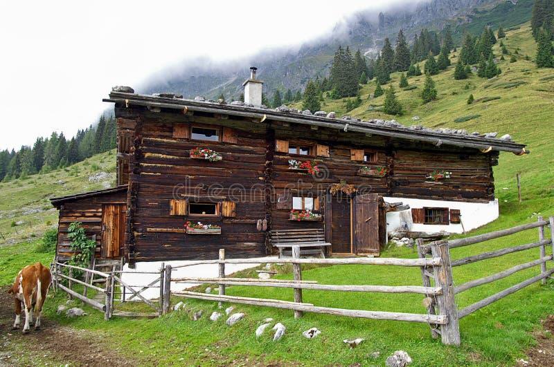 奥地利山坡的日志家 库存照片