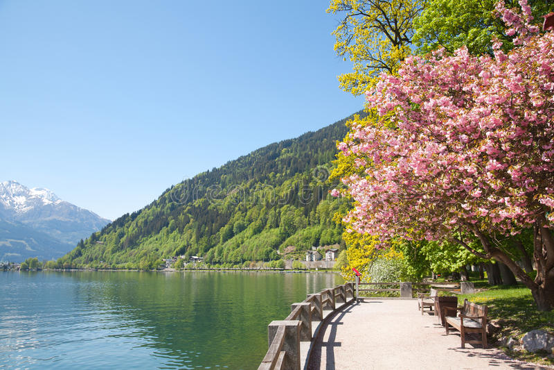 奥地利湖看到zell 免版税库存照片