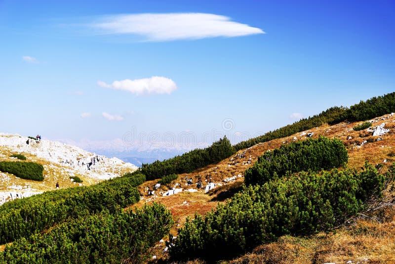 奥地利阿尔卑斯的看法从Krippenstein山的,上特劳恩,奥地利 免版税库存图片