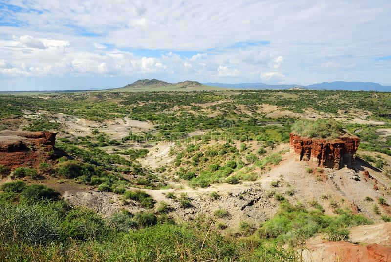 奥杜威峡谷,坦桑尼亚 库存照片