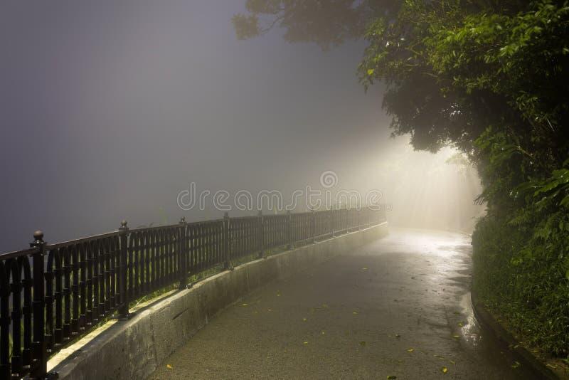 奥秘雾在有方式的黑暗的公园点燃 免版税库存图片