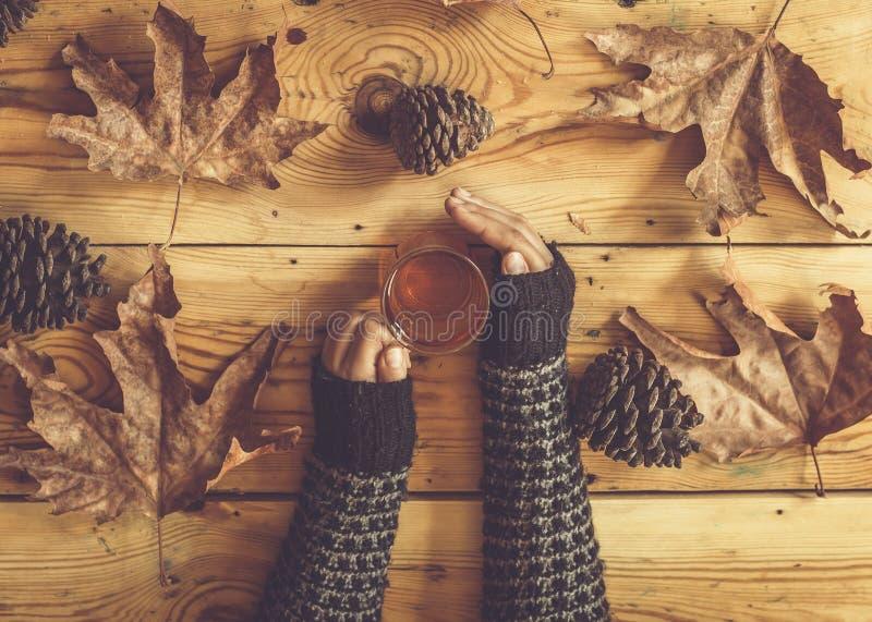 女人手中的茶杯 落叶在木桌上 《秋天静物》 秋,秋,食,饮 顶视图 库存照片