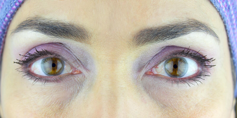 女人美丽的蓝眼 免版税库存照片