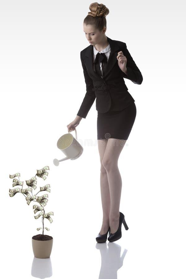 女商人浇灌的美元金钱植物 免版税库存照片