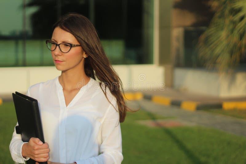 女商人-储蓄图象 库存照片