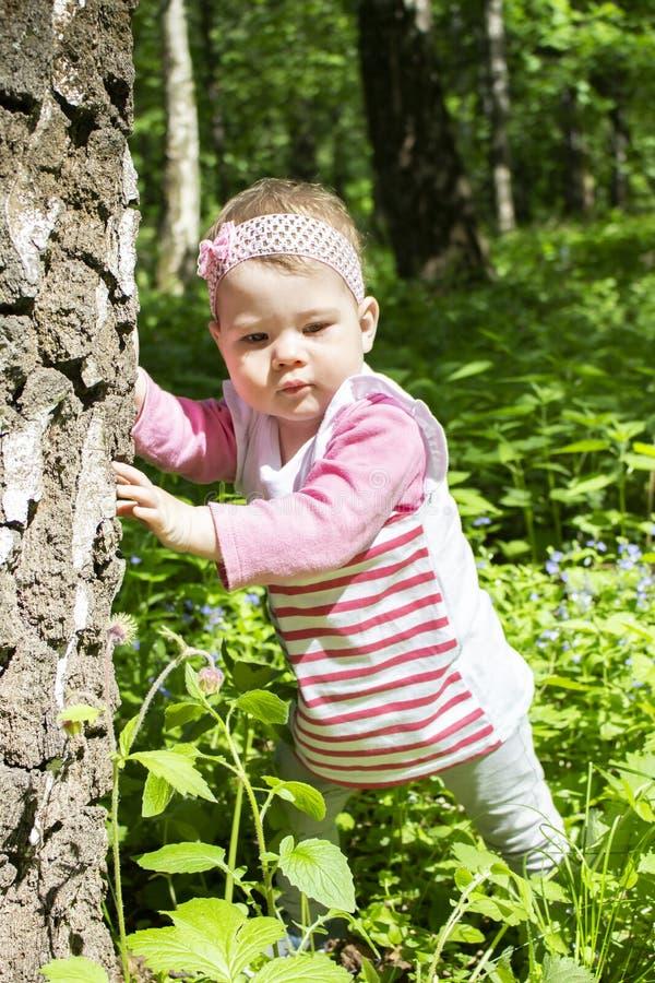 女婴在公园走,学会走,保持树干 学习自然的10个月的孩子 桃红色的一个女孩 免版税库存照片