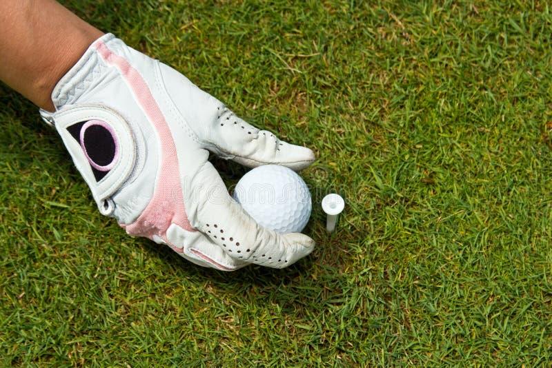 女子高尔夫球运动员的一只手套的手的特写镜头安置高尔夫球的  免版税库存图片