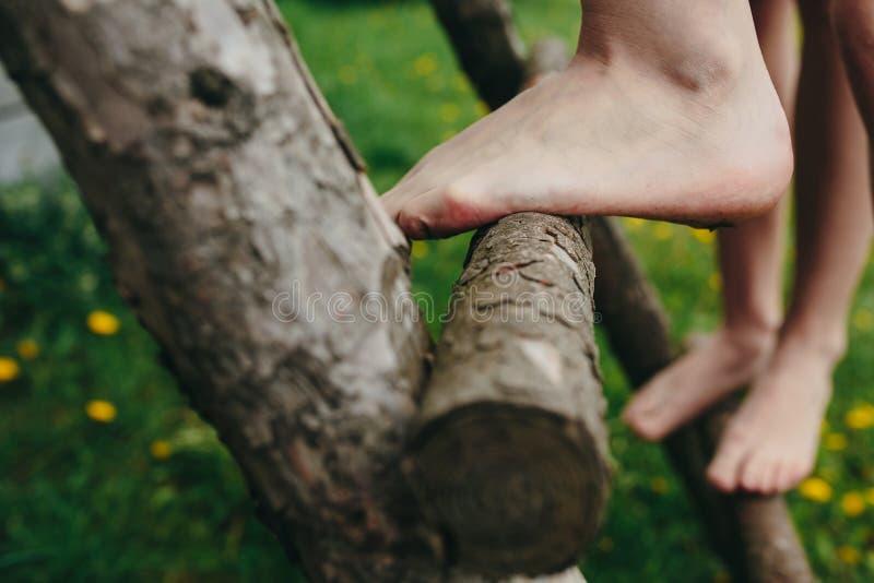 女孩上升的梯子到树上小屋里 免版税库存图片