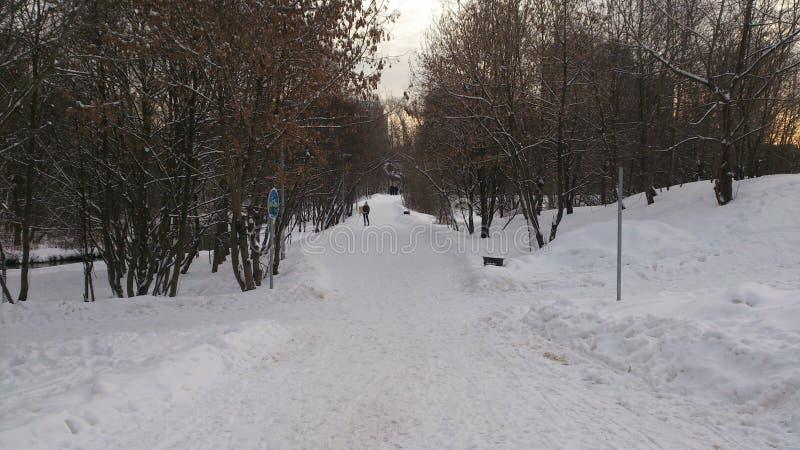 女孩与画架绘画冬天在莫斯科 库存图片