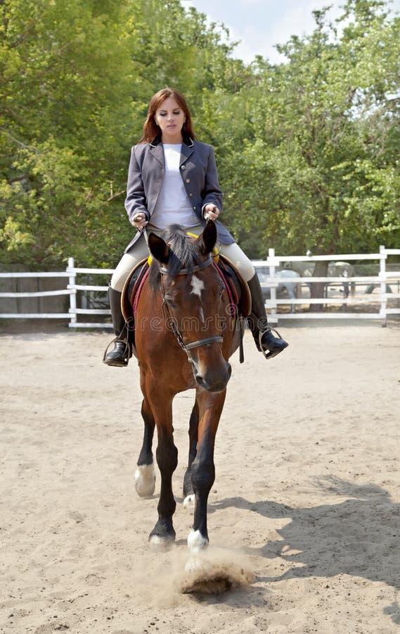 女孩乘坐马 免版税图库摄影