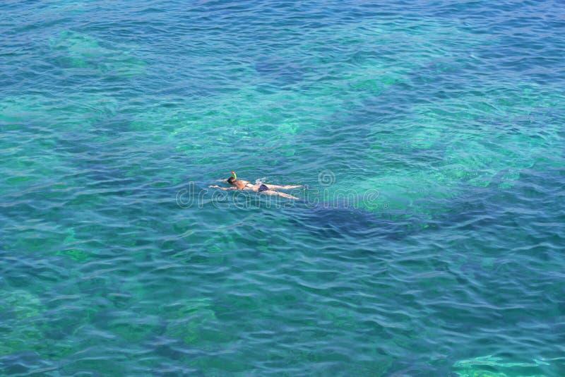 女孩例证海运游泳向量 免版税图库摄影
