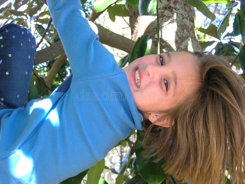 女孩俏丽的结构树 库存图片