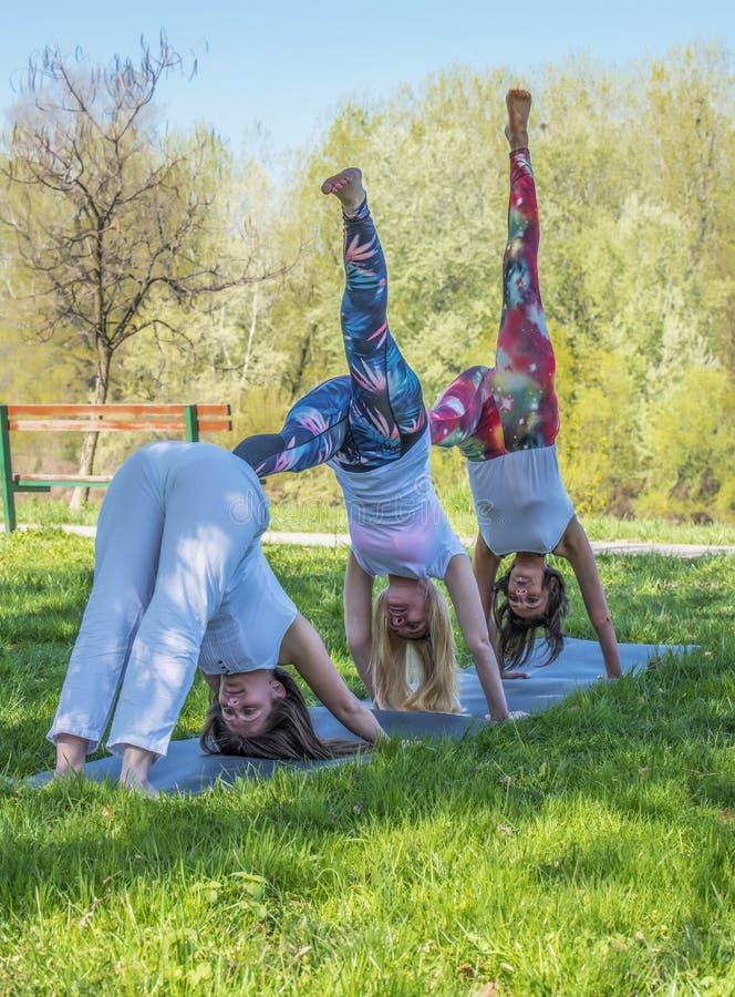 女孩做瑜伽的小组 图库摄影