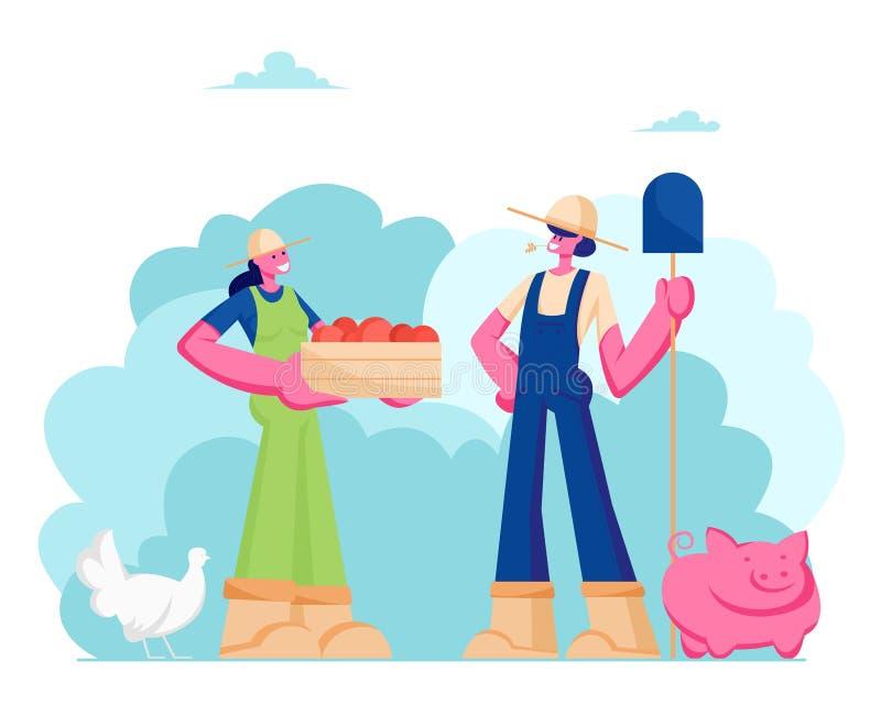 女孩农夫夫妇运转的总之的有铁锹和箱子的成熟健康水果或蔬菜,畜牧业,农场 向量例证